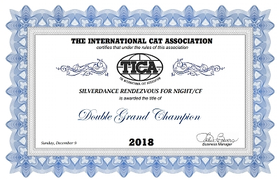 TICA DGC/IC Silverdance Rendezvous For Night